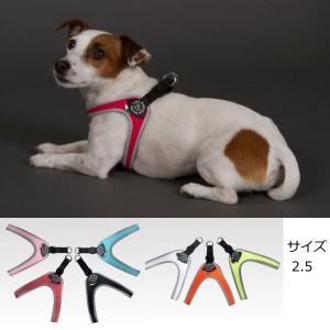 小型犬用ハーネス トレ・ポンティ Fibbia(フィッビア) 2.5サイズ