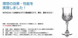 WONDAX(ワンダックス) ガラス質ボディ保護剤 WONDAX-1(ワンダックス・ワン) 120ml