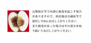 青森県産【A級品・ふじ・10kg(10キロ) ダンボール 詰】