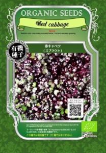 赤 キャベツ 種 有機 / グリーンフィールド / スプラウト / 大袋