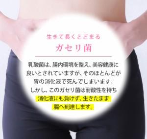 サプリメント 青汁 ガセリ菌 粉末 150g 1ヶ月分 サプリメント 乳酸菌 腸内フローラ 日本製 大麦若葉 ケール お試し