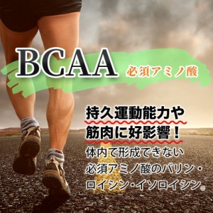 お盆中8/10〜15 \62%OFF/ サプリメント HMB フォルスコリ BCAA タブレット 約3ヶ月分