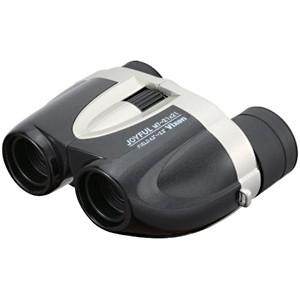 ビクセン 2.1倍双眼鏡 「星座観察用双眼鏡」 セイザカンサツヨウ SG2.1×42(送料無料)