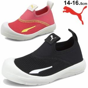 キッズ スポーツサンダル ベビー サマーシューズ 14-16.5cm 子供靴/プーマ PUMA アクアキャット シールド インファント/ウォーターシュー
