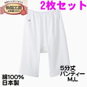 2枚セット グンゼ 婦人 肌着 M・L 5分丈パンティー パンツ 快適工房 レディース インナー 肌着 綿100% 日本製 送料無料