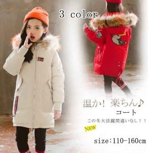 レディース 中綿コート 中棉ジャケット 無地 可愛い 冬 防寒着 フード付き 女の子 あったか