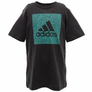 アディダス(adidas)Tシャツ 半袖 ボーイズ マストハブ バッジ オブ スポーツ BOX GUW23-FM4493 オン…