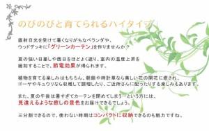 アイアン製グリーンカーテン DNF-270