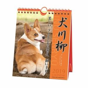 コーギー 犬川柳 週めくり カレンダー 2019 年 壁掛け 卓上 スケジュール いぬ 動物 写真 書き込み平成31年 暦 予約 メール便可  cp100