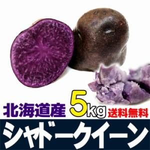 シャドークイーン 5kg じゃがいも 北海道産 ジャガイモ 贈り物 内祝