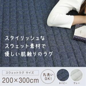 ラグ カーペット 3.5畳 3.5帖 ラグマット 生地 スウェット スウェットラグ 200×300 SWR-2030 ホットカーペット対応 床暖房対応 丸洗いOK