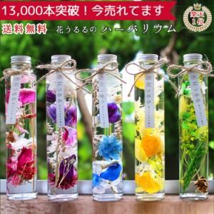 あす楽OK!花うるるのハーバリウム ギフト プレゼント 花 プリザーブドフラワー ボトル (お中元 誕生日 ハーバリウム ドライフラワー