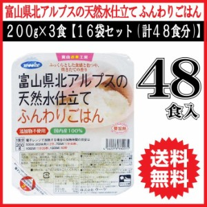 レトルトご飯 送料無料 ごはん 電子レンジ 簡単 ご飯 レトルト食品 200g×3食入×16袋セット 計48食分 レトルト米 インスタントご飯