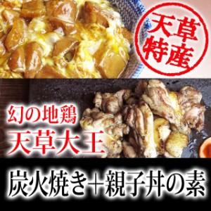幻の地鶏「天草大王」炭火焼と親子丼の親子丼の素セット(各3袋)