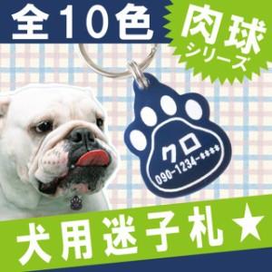 敬老の日  名入れ 犬 首輪 迷子札 名札 名前入り キーホルダー ペット 【 犬用 迷子札 】 ペットグッズ 子犬 誕生日 プレゼント 犬 男性