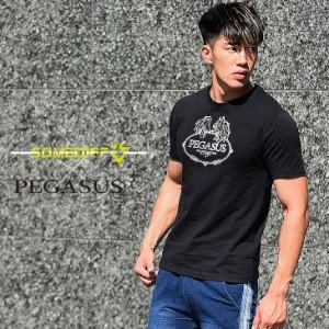 Tシャツ メンズ 半袖 半袖Tシャツ カットソー 筋トレ スポーツ ブランド おしゃれ マッチョ ジムウェア ワークアウト ランニング 格闘技