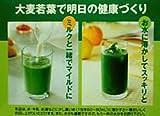 【湧永製薬】プレビジョン グリーン末 306g(3.4g×90包)