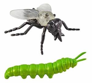 サファリ 昆虫 チューブ