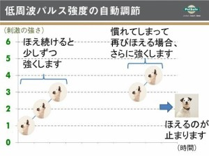 ペットセーフ バークコントロール ベーシック 【無駄吠え防止首輪】