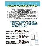 【10枚セット】ミクロキャッチ マスク E-3590