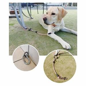 キンペックス ドッグリード(犬用リード) おでかけワイヤーリード 全長70cm 中型犬~大型犬対応 ピンク