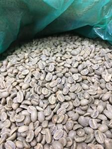 松屋珈琲 コーヒー生豆 パプアニューギニア エリンバリ GOLD 1kg