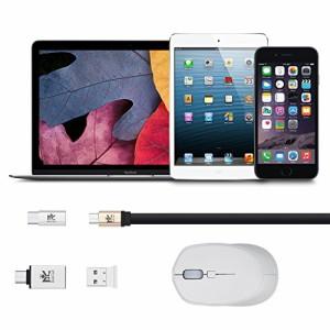 (2個セット)アルミニウム合金製Type C OTG& Type Cアダプタ シルバー Roiciel USB-C 変換アダプタ Micro高速転送可能RC-TCWB06