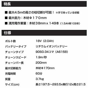 ブラックアンドデッカー(BLACK+DECKER) コードレス高枝ポールチェーンソー 18V 2.0Ah GPC1820LN