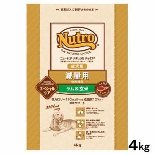 ニュートロ ナチュラルチョイス スペシャルケア 減量用 全犬種用 成犬用 ラム&玄米 4kg
