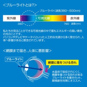 サンワサプライ 11.6型ワイド対応ブルーライトカット液晶保護フィルム LCD-116WBC