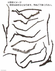 形状お任せ 煮込み済み スティック流木(約20〜40cm) 3本セット