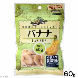 アラタ 乳酸菌付き おやつセレクト バナナ 60g 小動物 おやつ (ハムスター 餌)