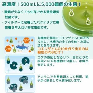PSBQ10 + Q10サポートエレメンツ 30mL海水用5個セット