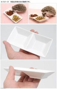 ハリネズミのツインディッシュ 陶器製 試供品ハリネズミの食事昆虫食サポート付き エサ皿 餌皿 フード ハリネズミ