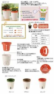 リッチェル ミエルノPlusポット 17型 オレンジ 底面給水 室内園芸 園芸 ガーデニング インテリア用 室内  ポット
