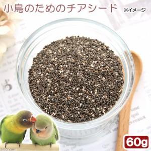 小鳥のためのチアシード 60g 鳥 フード 餌 おやつ 無添加 無着色 (ハムスター 餌)