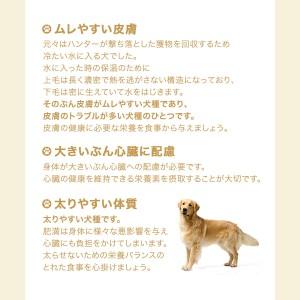 ロイヤルカナン 犬用 ドッグフード ゴールデンレトリバー 成犬・高齢犬用 3kg ジップ付