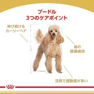 ロイヤルカナン 犬用 ドッグフード プードル 成犬用 3kg 3182550765206 ジップ付