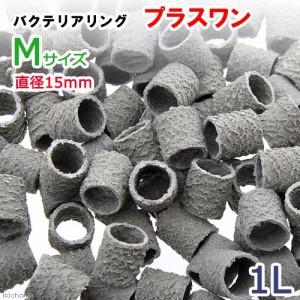バクテリアリング プラスワン Mサイズ 直径15 1L