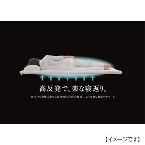ファインエアーマット 敷ふとんタイプ 昭和西川  /2241352125999
