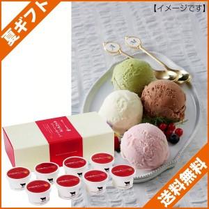 お中元 ギフト 送料無料 アイスクリーム ギフト 熊本阿蘇山麓ジャージー牛アイス/A-JR のし可