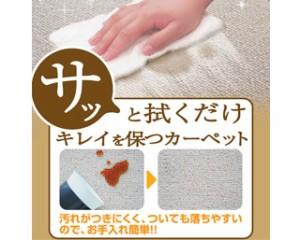 撥水・防汚ラグカーペット ガード (N) 十畳,10畳,10帖 352×440cm 日本製