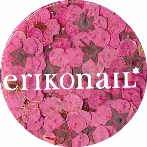 【20%OFF】erikonail 黒崎えり子 ドライフラワー(ピンク) ★ジュエリーコレクション (ERI-134) ネイルアート用の押し花♪