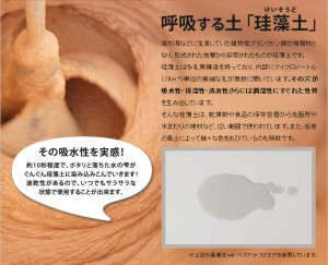 【脱臭剤/消臭剤】soil ソイル ドライングサック ラージ 2個セット 乾燥剤 吸湿脱臭剤 調湿 珪藻土 炭 ブーツ