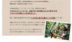 【冬季限定】フェアトレードチョコレート レーズン&カシューナッツ 50g/オーガニック/乳化剤不使用
