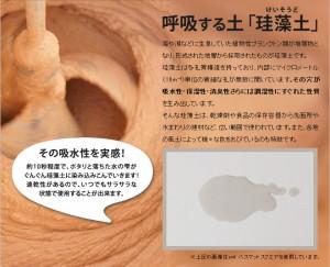 【調味料入れ】soil ソイル シーズニングケース セット 【ソルト/ペッパー】 セット販売 ケース ボトル 珪藻土 湿気 吸湿