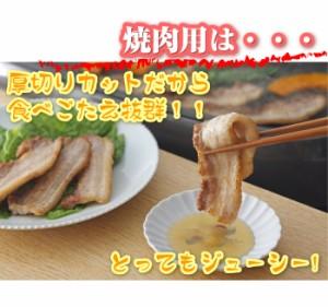 【冷凍】とろける豚バラ・選べるスライスor焼肉 たっぷりメガ盛り 1Kg 便利な小分けパック(12時までの御注文で当日発送、土日祝を除く)