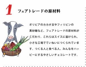 【冬季限定】フェアトレードチョコレート オレンジ 50g/オーガニック/乳化剤不使用