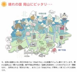 29年産 岡山県産きぬむすめ10kg【5kg×2袋】  送料無料 北海道・沖縄は756円の送料がかかります。 お米 米