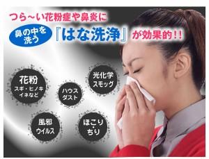 タイヨー ハナシャワー:花粉やハウスダストに負けるな!